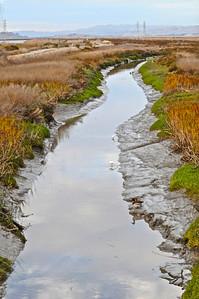 Stevens Creek  067