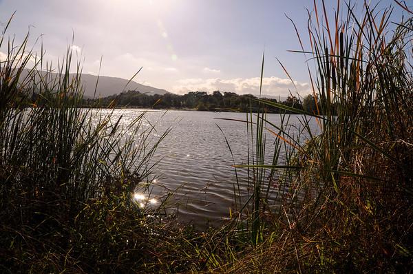 Almaden Lake & Trails