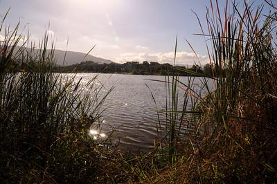 Almaden Lake 001