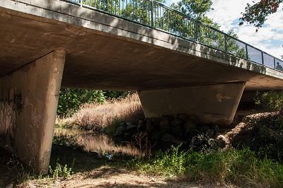 Los Alamitos Creek Trail 08.18.12-8