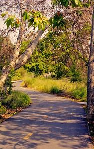 Los Alamitos Trail-031
