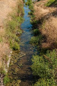 Canoas Creek 07.03.12-4