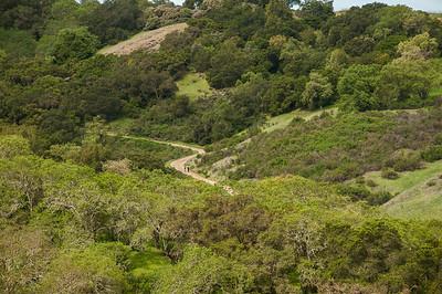 New Almaden Trail-0040