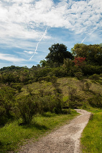New Almaden Trail-0035