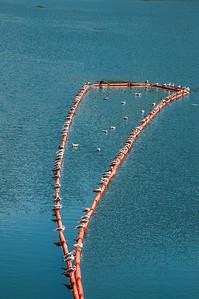 Guadalupe Reservoir Dam-0075