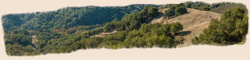 Bald Peaks Trail-0016 Panorama