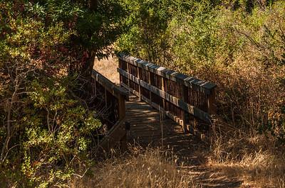 Serpentine Loop Trail 09.01.12-7