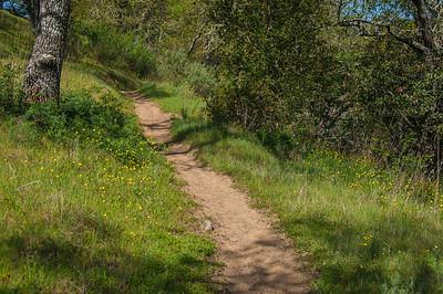 Serpentine Loop Trail-0014