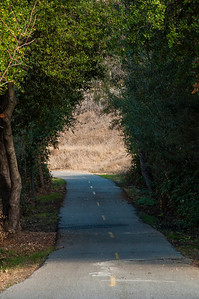 Coyote Creek Parkway - 011