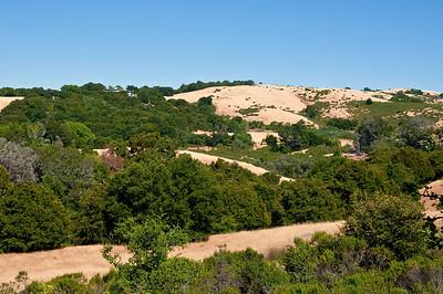 Franciscan Loop Trail-036