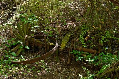 Franciscan Loop Trail-021