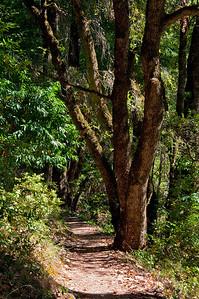 Franciscan Loop Trail-054