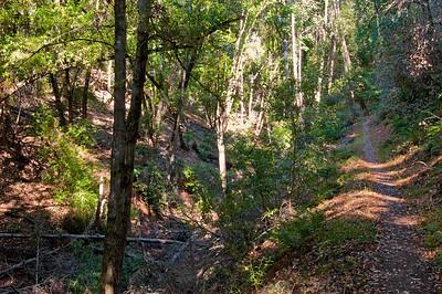 Franciscan Loop Trail-061