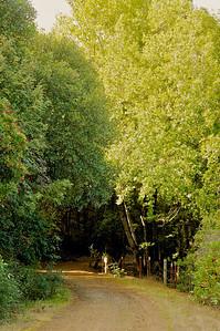Aquinas Trail-047