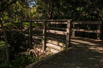 Ridge Trail 042213-0006