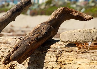Seacliff State Beach '11 066