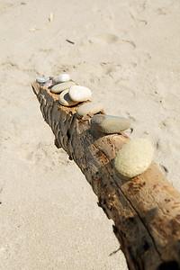 Seacliff State Beach '11 056