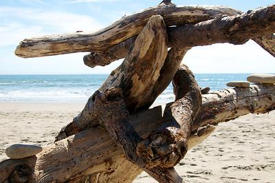Seacliff State Beach '11 057