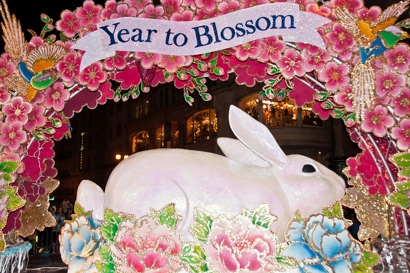 year-of-the-rabbit-3