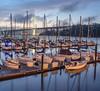 Pre-Dawn Boat and Bridge Scene from Treasure Island, San Francisco CA