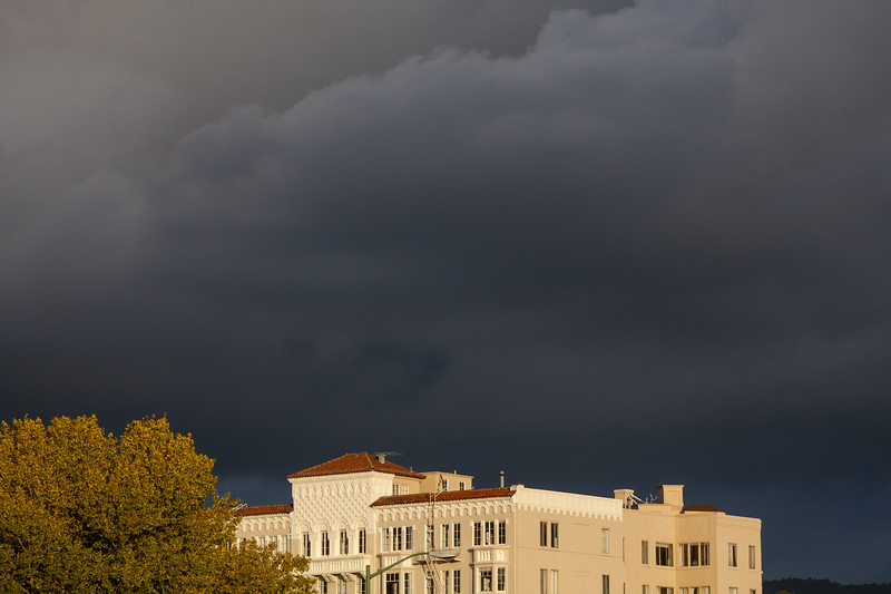 Tree and Apartment Building under Stormy Sky