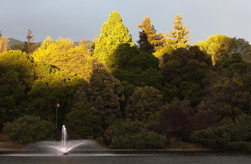 Near Sunset, Lake Merritt, Oakland CA