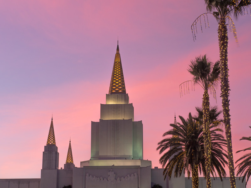 Mormon Temple and Decorated Palm Trees at Dusk