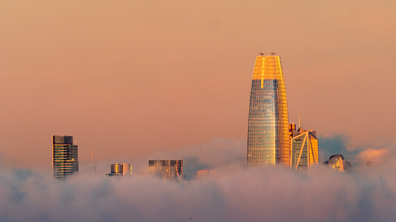 SalesForce Tower and a Few Friends Poking Above the Fog Layer