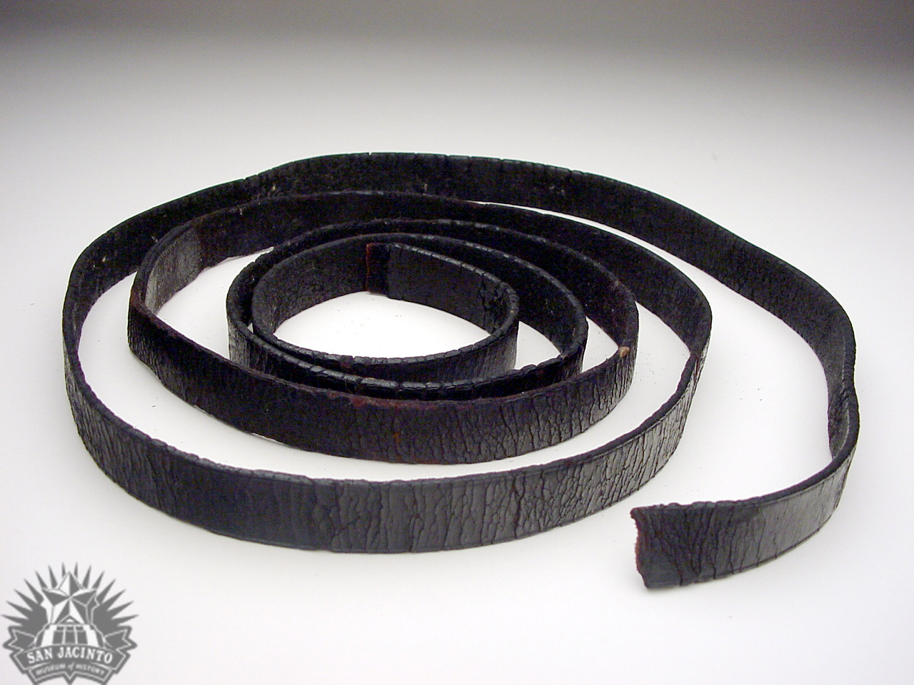 Bridle reins, part of Santa Anna's equipment captured at San Jacinto.  Acquired by Sidney Sherman after the battle.