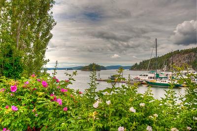 flowers-deer-harbor