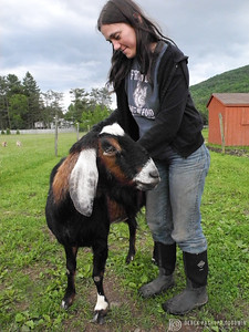 Stevie & Star at Woodstock Sanctuary