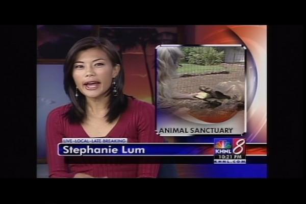 KHNL News<br /> Part 1 (2008) (2:02)