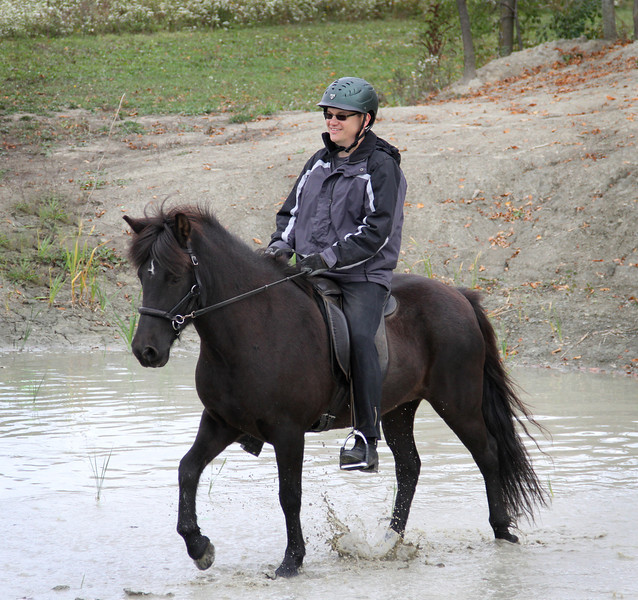 Heading through the water obstacle at a trail trial.  Fenja is very responsive even in a bitless bridle.