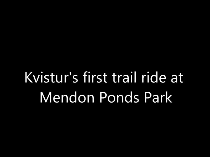 Kvistur's first trail ride at Mendon Ponds Park in Mendon, NY