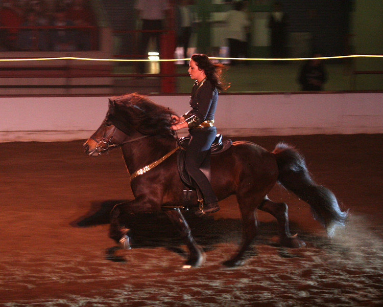 Performing in <i>Theater Equus</i> at the Horse World Expo in Syracuse – May, 2007 <br>