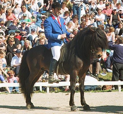 Receiving his prize<br>Landsmót 2000