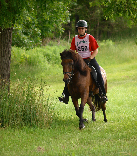 Hunter pacing with Steve at Knight Farm, August 2010