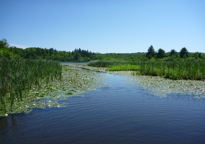 Riding around the Deep Pond<br /> Mendon Ponds Park<br /> June 2011