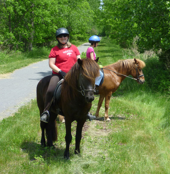 Andrea riding Hrokur and Kestrel riding Kraftur Lehigh Valley Trail June 2011 (<i>photo:  Steven Barber</i>)