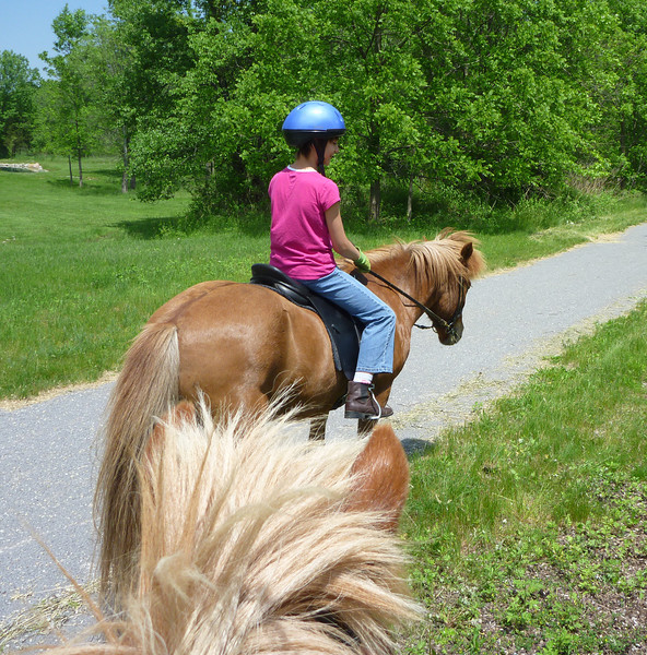 Kestrel riding Kraftur  Lehigh Valley Trail June 2011 (<i>photo:  Steven Barber</i>)