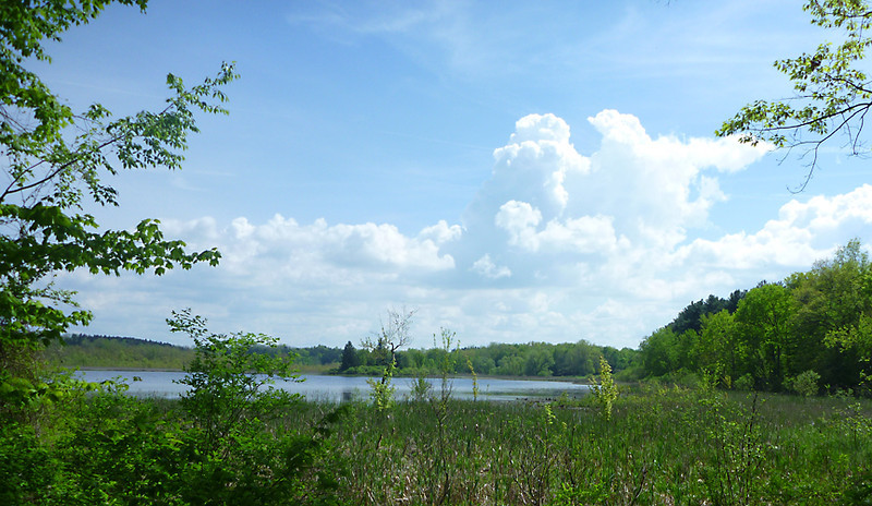 Riding around the Deep Pond<br /> Mendon Ponds Park<br /> May 2011