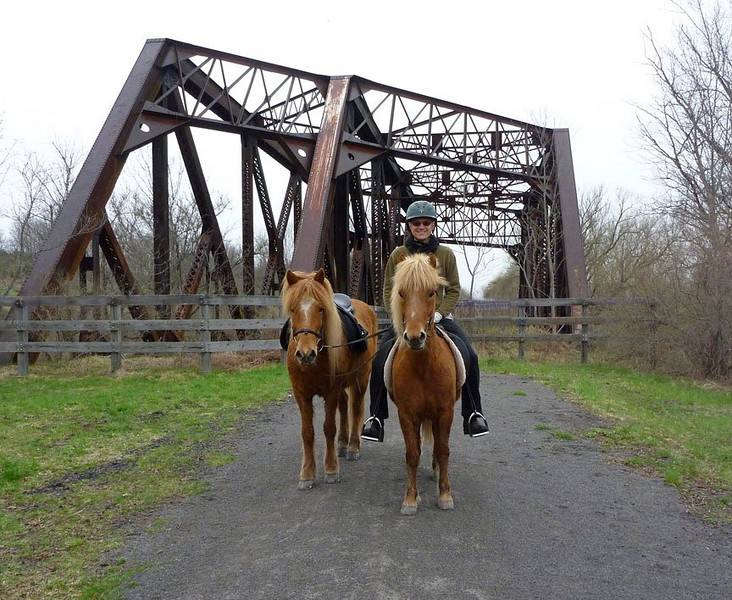 Steve riding Sailor and ponying Vikingur <br /> Leigh Valley Linear Trail<br /> April 2011