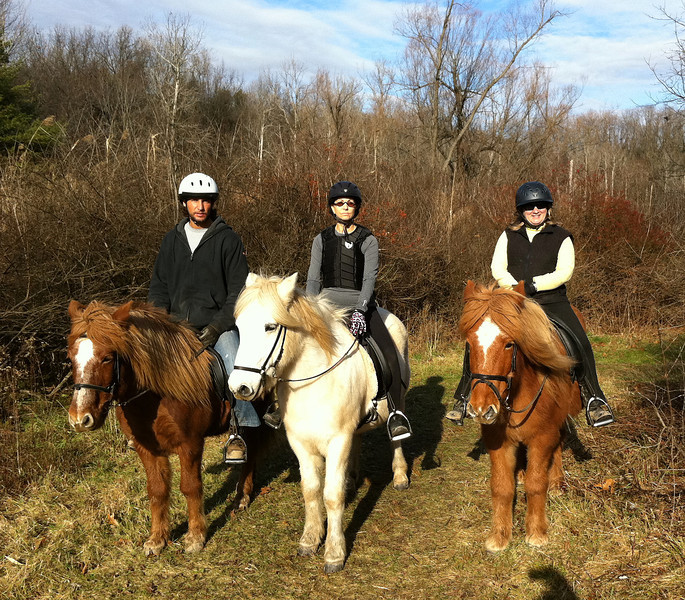 Mark riding Kraftur - Joanne riding Steinrikur - Andrea riding Vikingur  Sand Meadow Farm  - Mendon, NY December 2011 (<i>photo:  Steven Barber</i>)