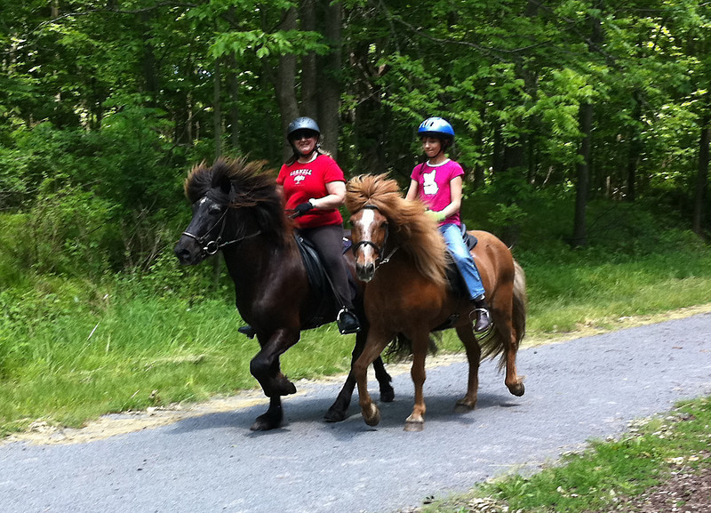 Andrea on Hrokur and Kestrel on Kraftur tolt down the Lehigh Valley Trail Mendon, NY June 2011 (<i>photo:  Steven Barber</i>)