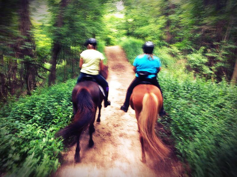 Deb & Fenja and Andrea & Kraftur fly through the East Esker trails at Mendon Ponds Park<br /> June 22, 2013