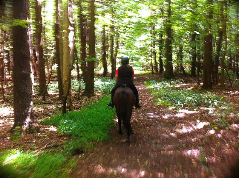 Andrea riding Hergill through Mendon Ponds Park<br /> September 8, 2013