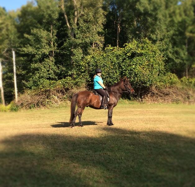 Andrea riding Hergill in Mendon Ponds Park ~  September 20, 2014