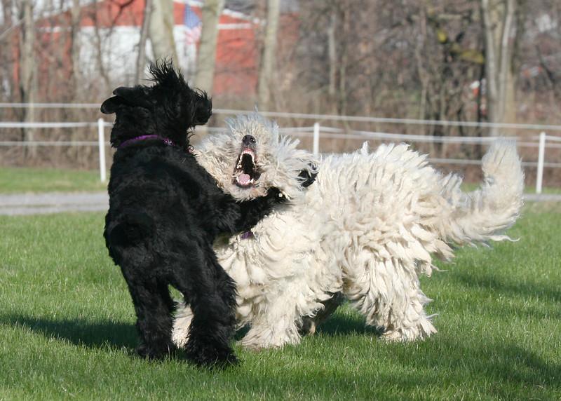 Tasha and Niea at play