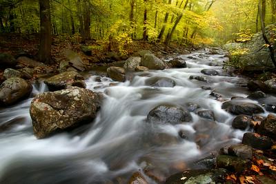 Fall at Stony Brook