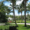 Sandals Emerald Bay- the lovely grounds on the Emerald Bay side of resort. Buildings 5 & 6 and also the Martha Stewart wedding gazebo.<br /> <br /> For more information on Sandals Emerald Bay or any of the other Sandals resorts, please contact us at Romance@SandnSunVacations.com